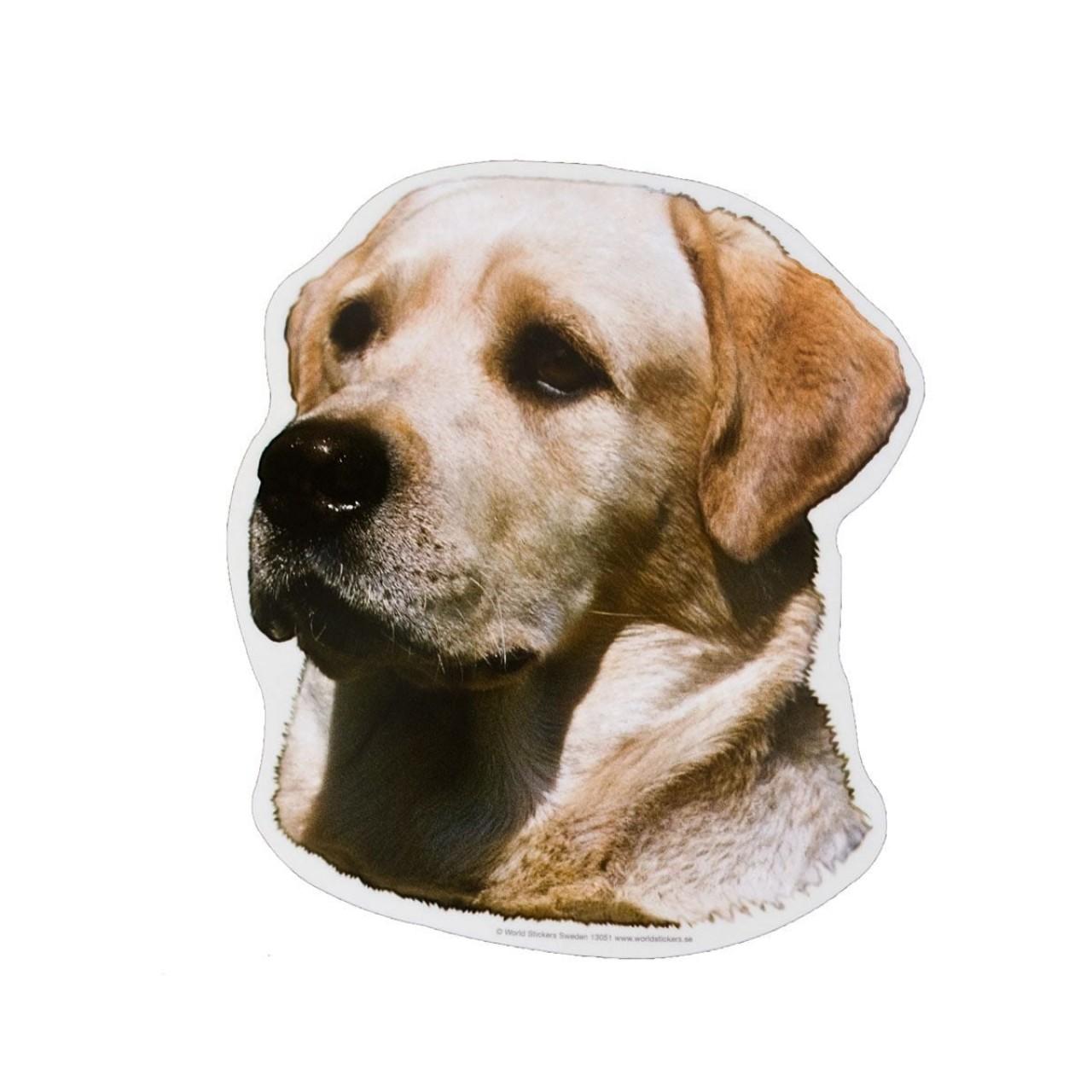 Aufkleber Labrador - gelb