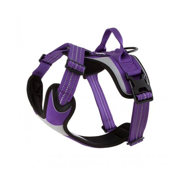 Hurtta Lifeguard Dazzle Geschirr violett