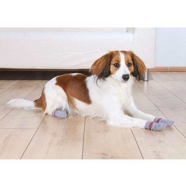 Trixie Hundesocken mit Antirutsch-Noppen 2 Stück
