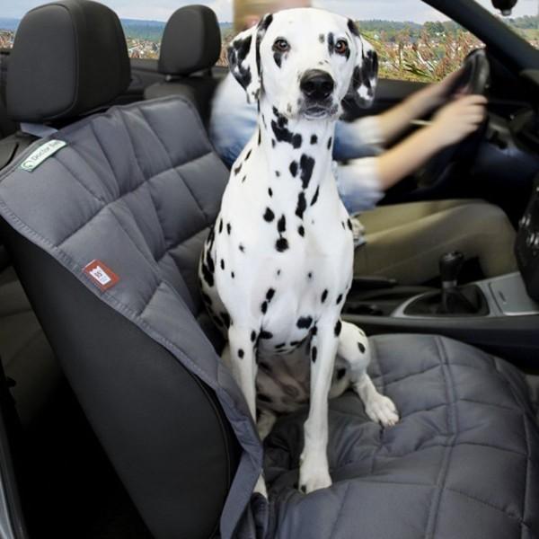 Doctor Bark Beifahrersitz Autodecke grau