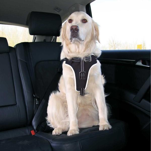 Auto Sicherheits Geschirr Dog Protect