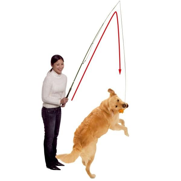 Reizangel Trainingsangel für Hunde